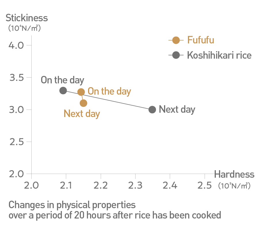 Changes in physical properties over a period of 20 hours after rice has been cooked