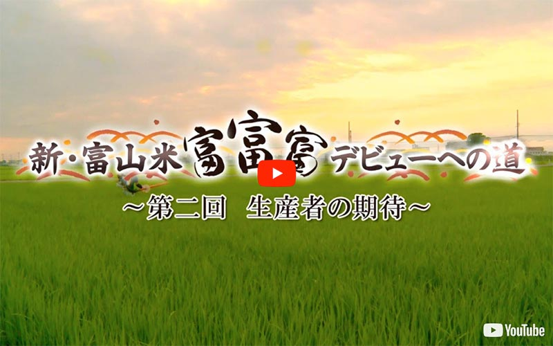 「新・富山米「富富富」デビューへの道」〜第2回〜